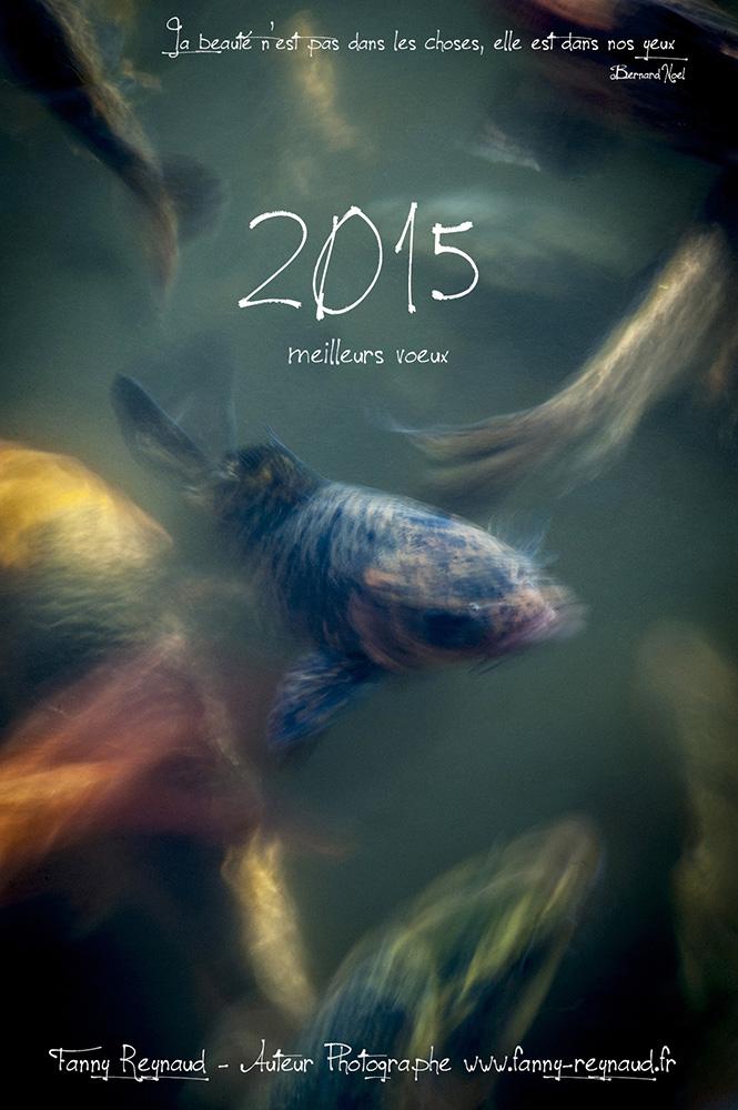 Carte de voeux pour la nouvelle année 2015.