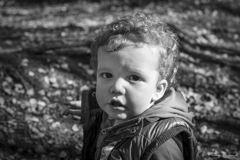Photographie d'un petit garçon en bas âge dans la forêt en auvergne - portrait un photographe professionnel de clermont-ferrand. © Fanny Reynaud