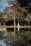 photo de couple au chateau de feligonde a sayat en auvergne, reflet dans l'eau et arbres